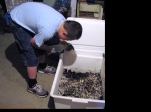 moisture for worm farms