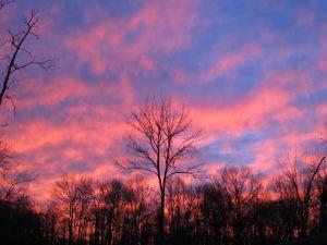 Pink glow sunset