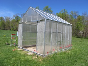 My greenhouse in the spring!