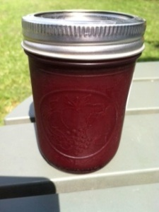 Seedless Blackberry Jam processed and ready to be eaten, stored, or shared with others.  Jam makes a great gift.